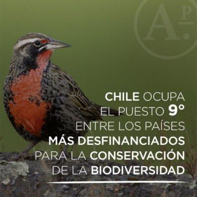 Chile 9 mas desfinanciado para conservacion