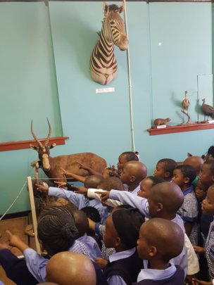 Pre-school tour to the museum