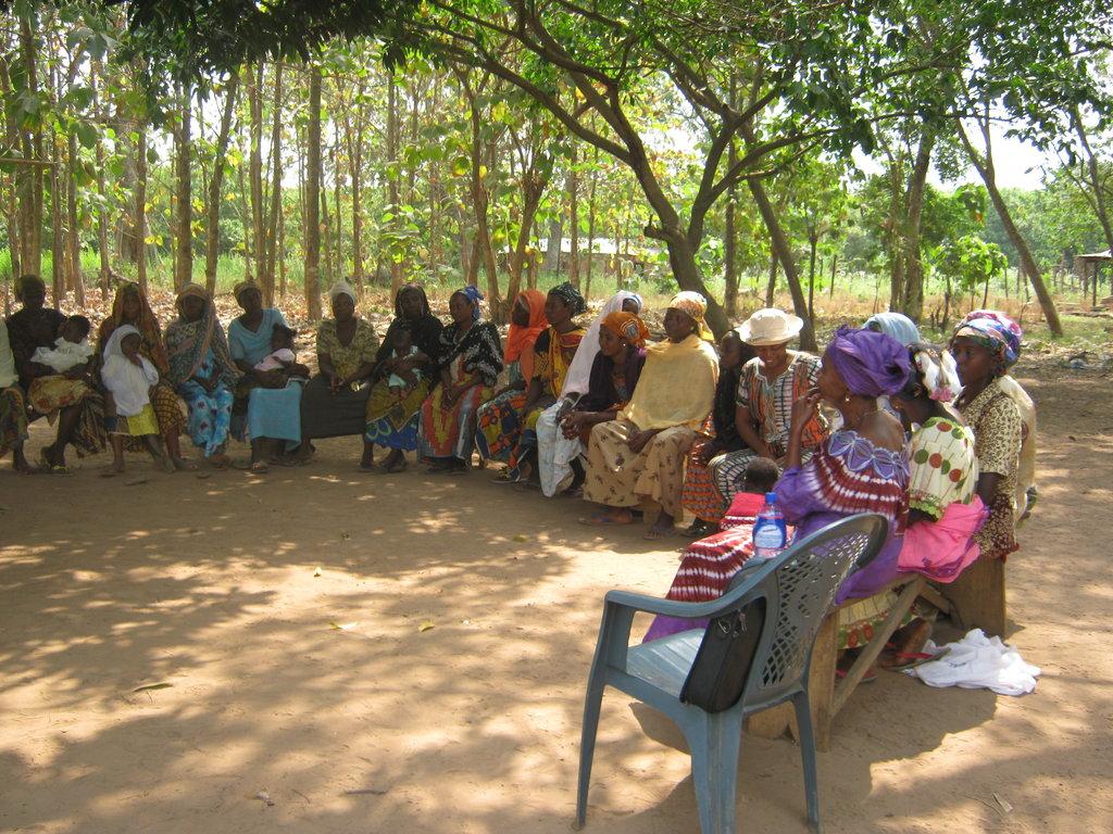 Ghanian women discuss new information