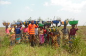 Fight against agricultural land degradation