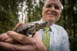 Zoo Director Don Moore with a western pond turtle