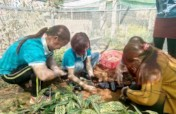 5000 seedlings for ethnic women to restore forests