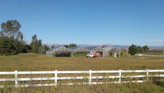 Farm field ready for fence work, near Longmont.