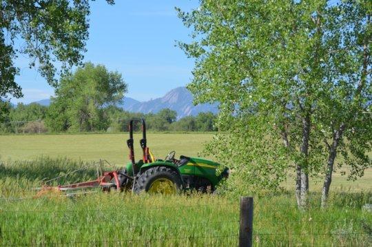 Farm tractor in field