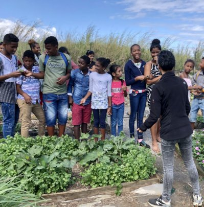 Support 150 Mauritian Youth Agripreneurs
