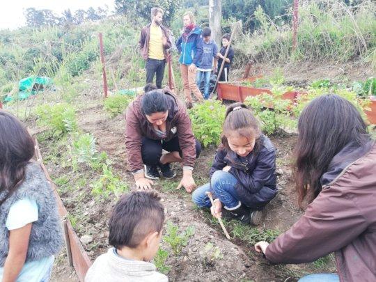 Teaching kids how to fertilize plants