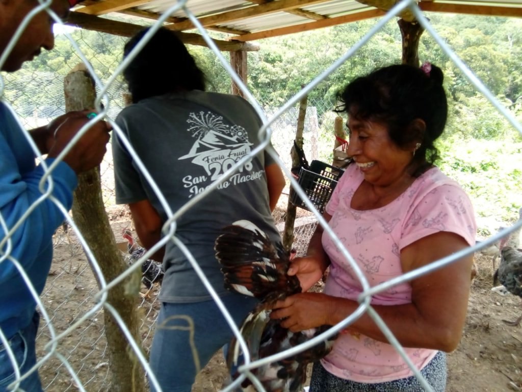 Empowering 50 rural young people in Oaxaca, Mexico
