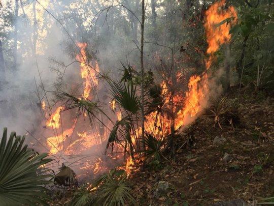 Fire raging / El incendio
