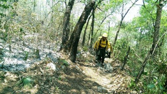 Fighting the fire - Combatiendo el incendio