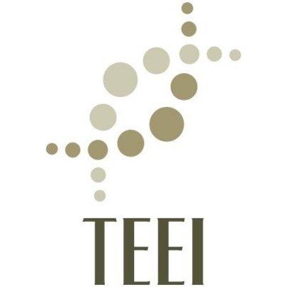 TEEI Educates to Break the Cycle