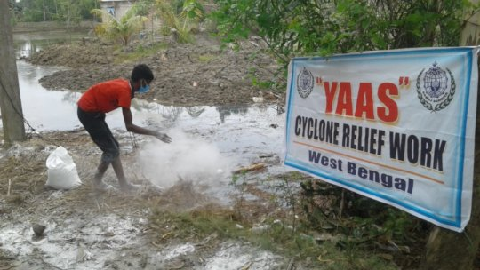 Our Efforts- Spreading Lime & Bleaching