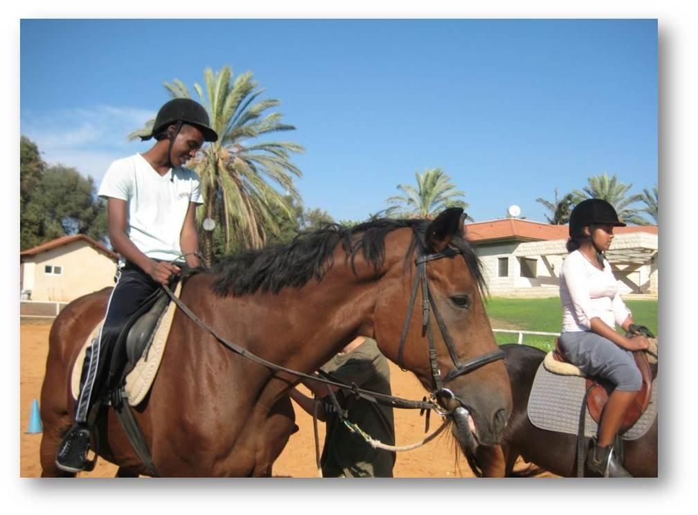Horse riding lessons as enrichment activities