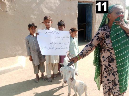 An Elderly Widow Receiving Goat