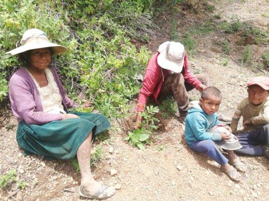 Familia con su nueva planta