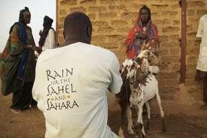 RAIN staff member Koini in husbandry training