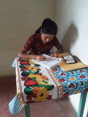 Girl Pioneer having virtual classes online