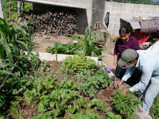 Family garden program addressing nutritional needs