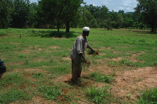Farmer Youssouf in Action