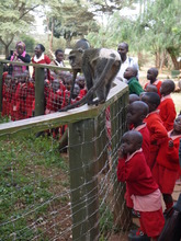 St. Vincent's children at Nairobi Animal Orphanage