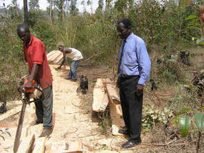 Inspection of sawing of timber for the project
