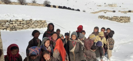 Students with Yaks in the background