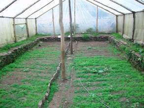 Interior of Model Greenhouse in Amparaes, Peru