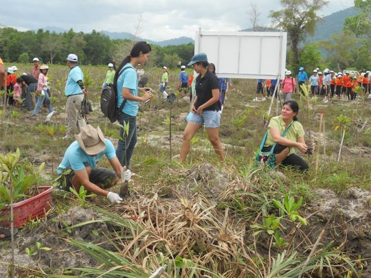 Planting of 2000 Trees