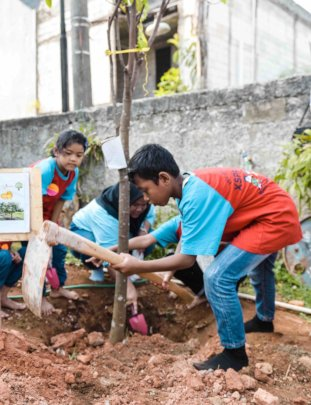 The Primary students are planting the fruit trees