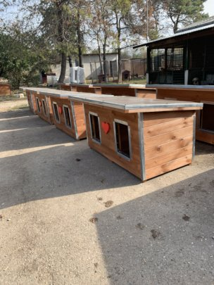 doghouses waiting for bringing to kennels