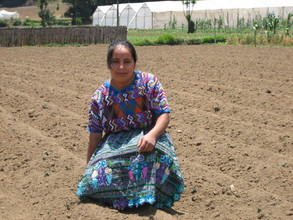 Catalina has readied her field for planting!