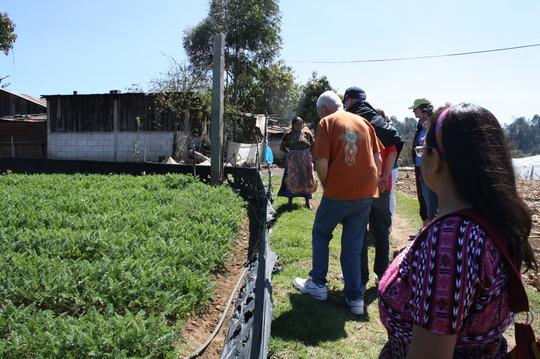 Visitors admire Santos and Cristina