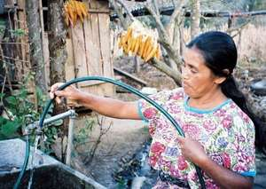 Vicenta prepares to water her crops