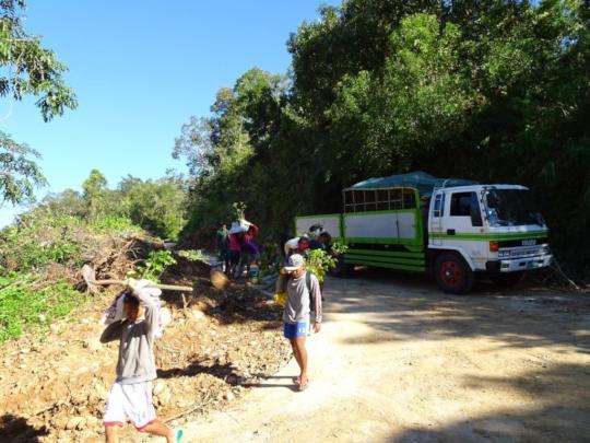 Hauling of seedlings using a 4-wheel drive truck.