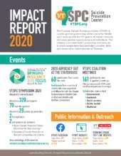 2020 Impact Report (PDF)