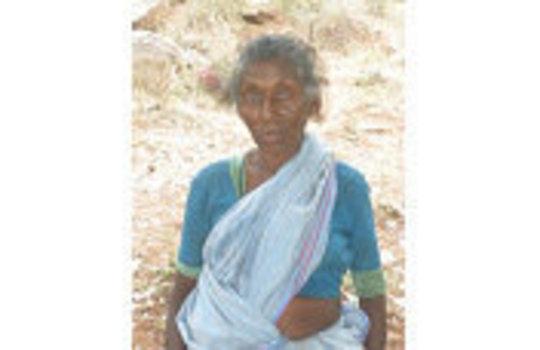 Mrs.Chellammal tribe woman for honey bee making