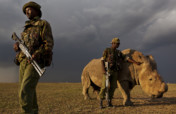 The Armed Rangers of Ol Pejeta