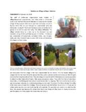 Report - kabisine (PDF)