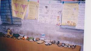 exhibition for  healthyfood