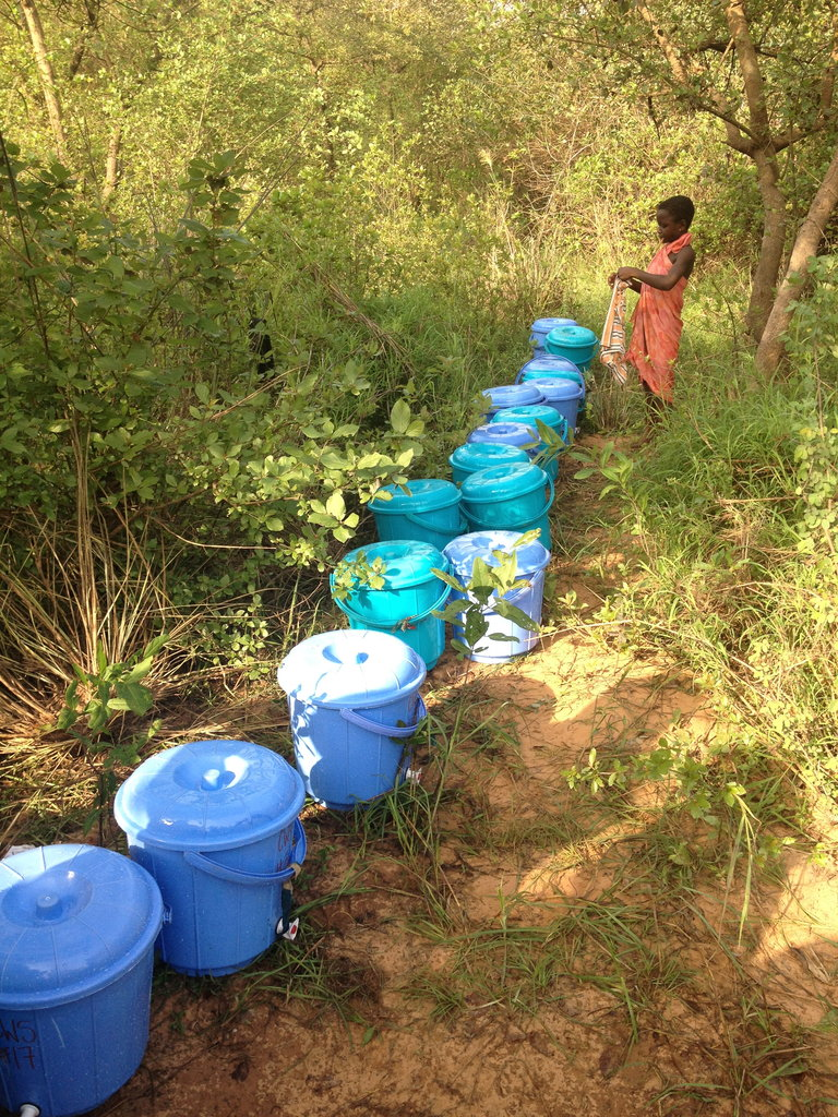 Buckets all lined up to be filled with clean water