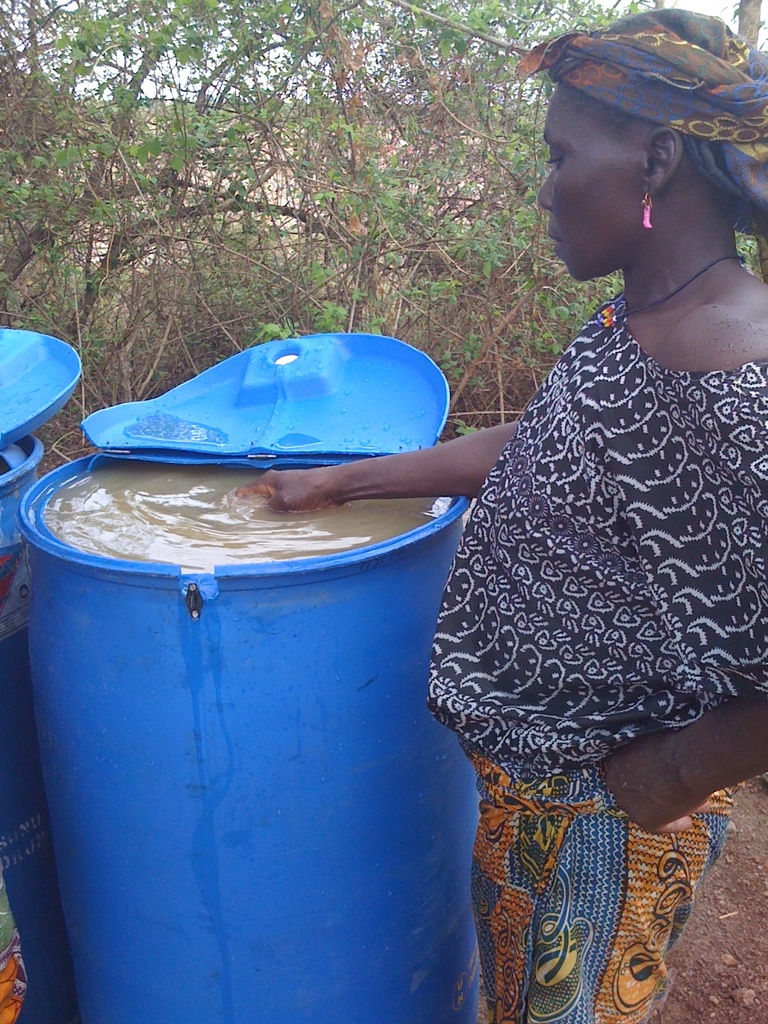 Amina treating dugout water with Alum in Gbong