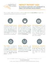 Sprout Enterprise Impact Report 2020 (PDF)