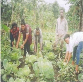 Providing Microloans to 5000 Poor Farmers