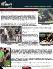 Rescue Newsletter Issue 4 (PDF)