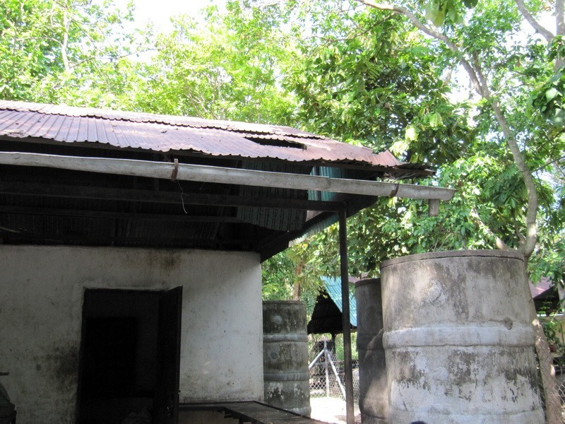 Roofs in need of repair