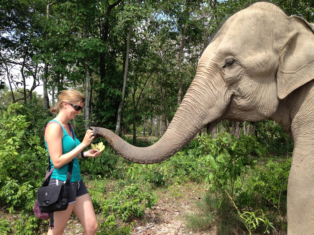 Walking with Lucky the Elephant