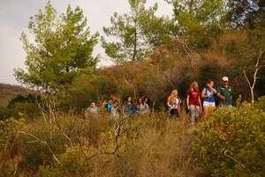 Environmental Exploration Hike