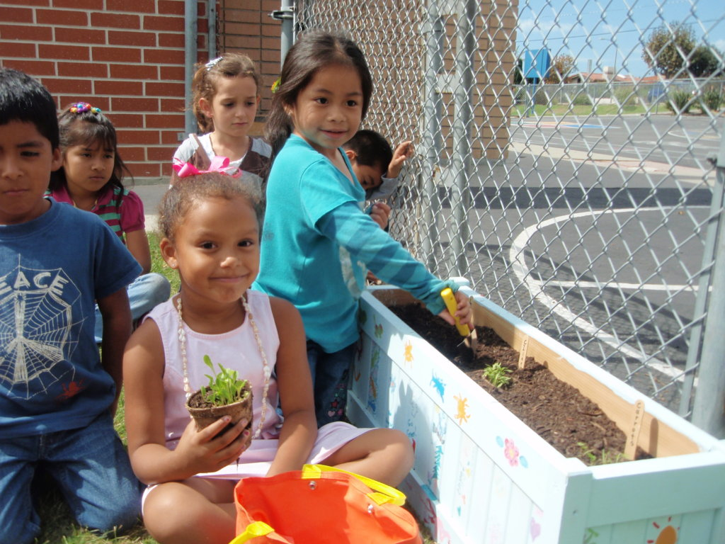 School Gardens - connecting the campus to learning