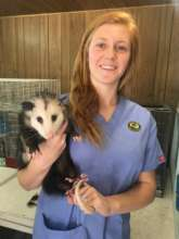 Mikayla and Dexter, the Opossum