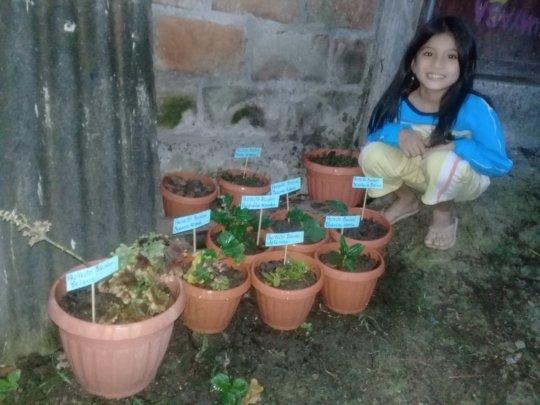 Keyla's Home Garden