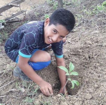 Denis planting a tree